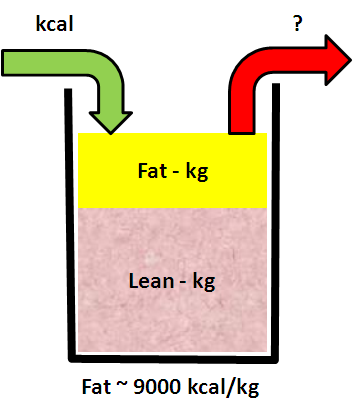 Energy_Weight_Model